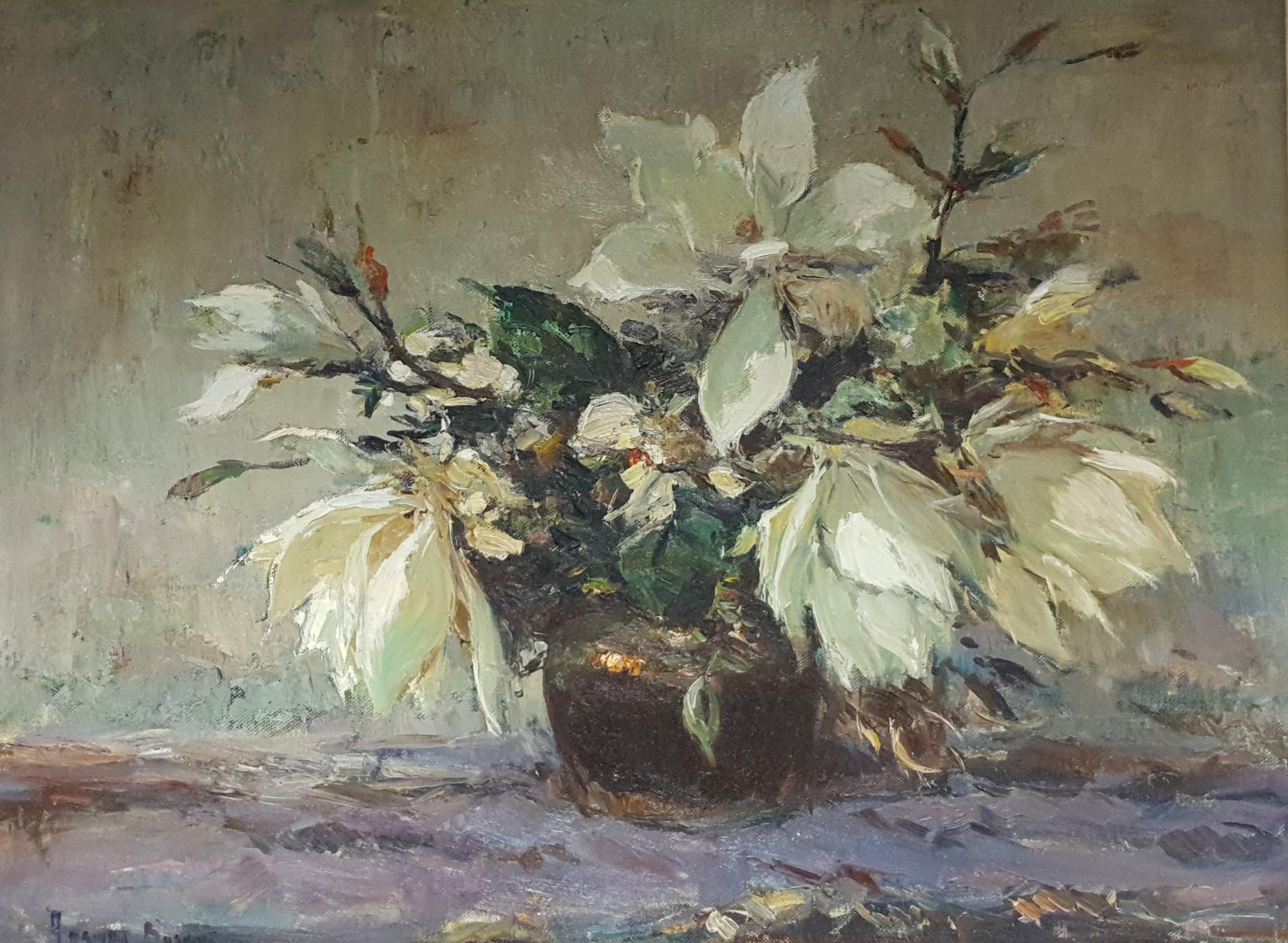 adriaan boshoff magnolias