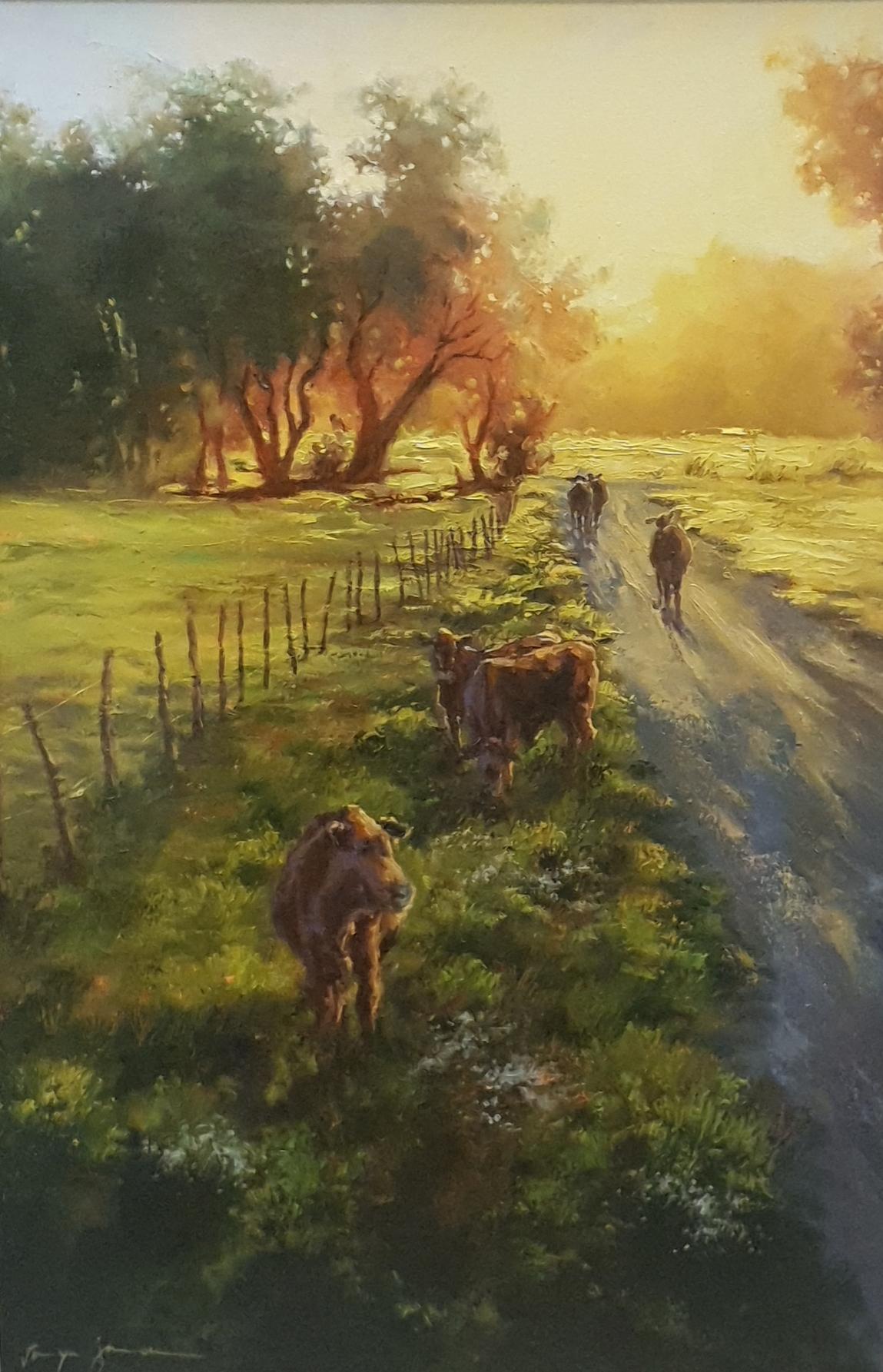 tanya jansen cattle in the field