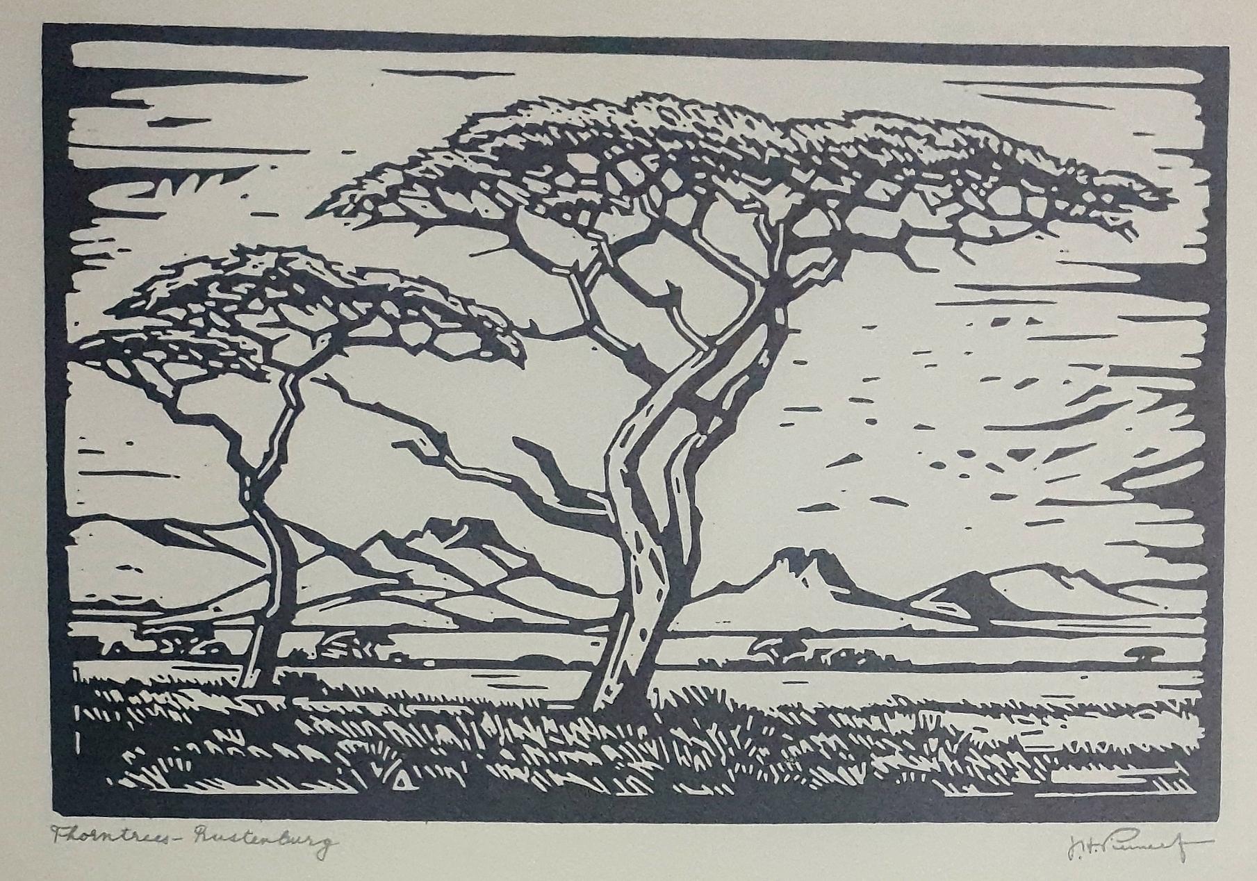 pierneef Thorntree Rustenburg