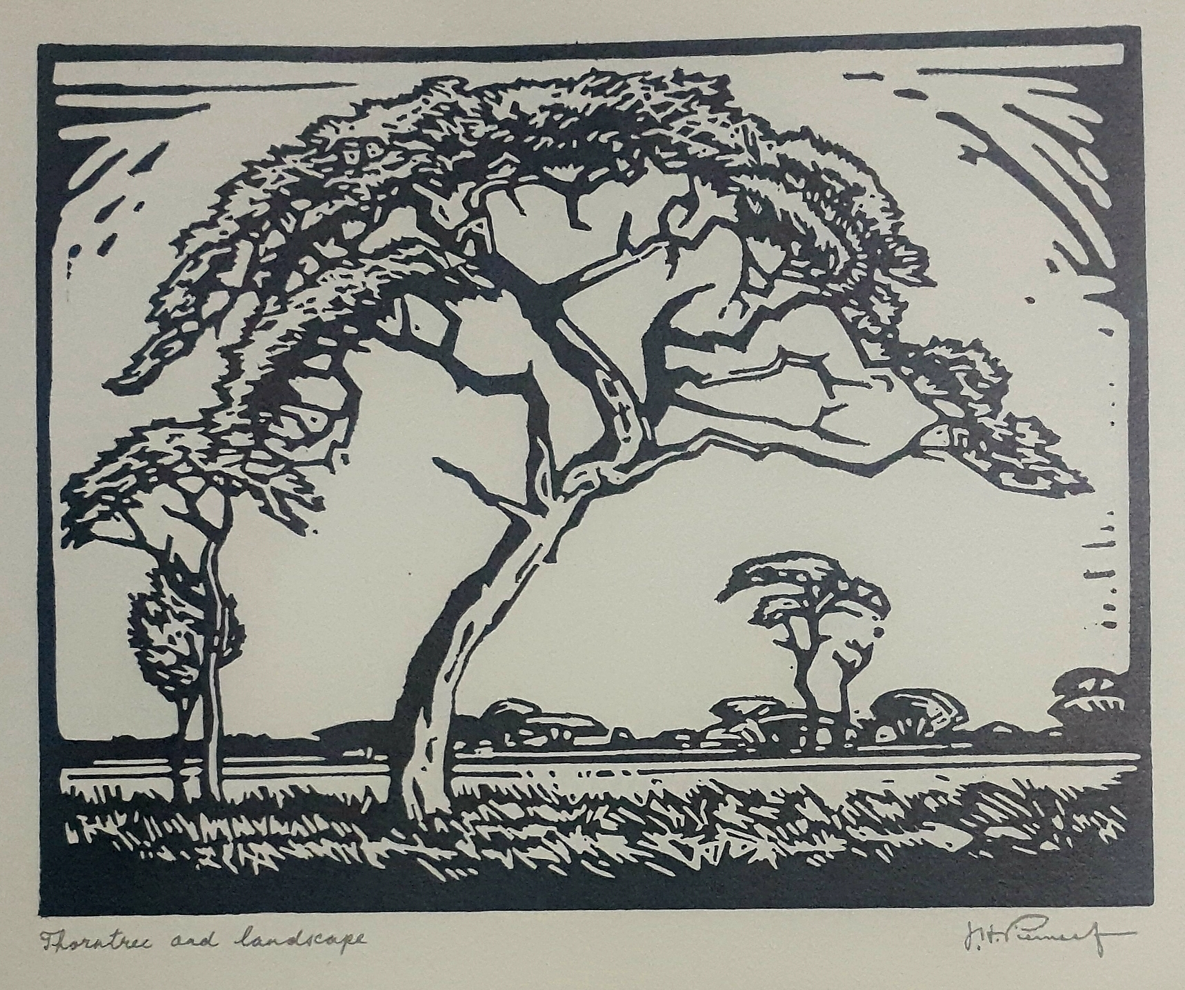 pierneef Thorntree and Landscape